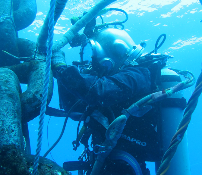 In-Water Survey (IWS)
